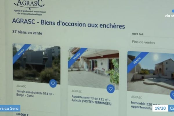En France, l'Agrasc était chargé jusqu'ici de vendre aux enchères, à des particuliers, les biens confisqués.