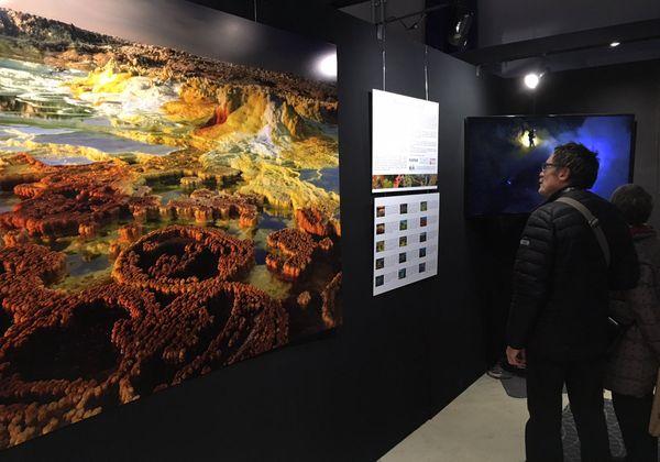 """Un visiteur devant les photos du site éthiopien de Dallol, saisi par Olivier Grunewald etprésenté à Montier-en-Der dans le cadre de l'exposition """"Origines""""."""