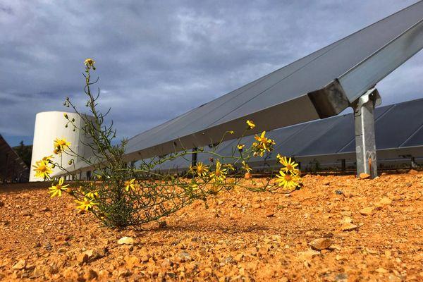 La centrale solaire thermique, installée à Narbonne (Aude), ne produit pas d'électricité mais de l'eau chaude. octobre 2021.