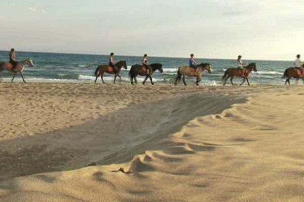 La pratique de l'équitation  sera freinée par les nouvelles taxes.