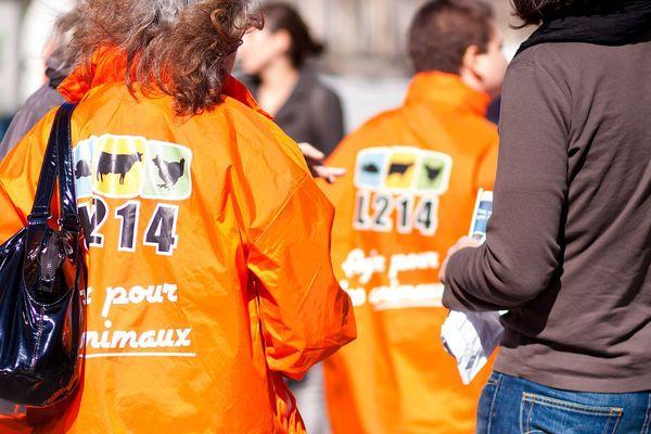 Les militants de l'association L214 seront postés place de Jaude à Clermont-Ferrand, entre 17h et 19h, pour diffuser les vidéos de l'abattoir d'agneaux, dont le procès a été reporté.
