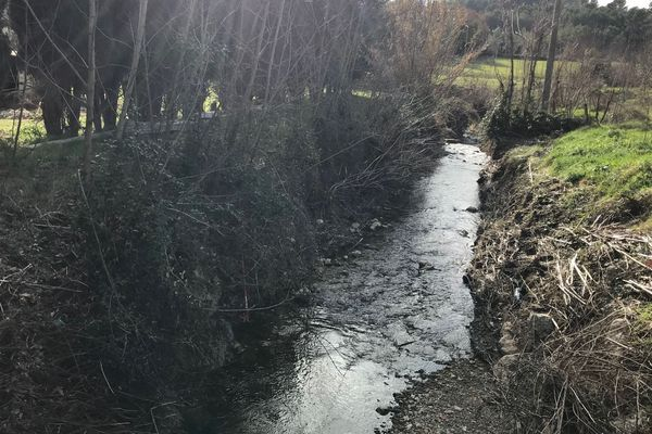 Depuis le 18 janvier, de l'eau noire coule dans le vallon du Figueiret.