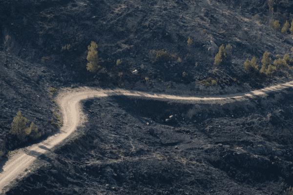 Sur les pentes de la Gineste, après l'incendie