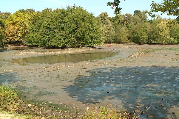Plus de 50 000 m3 d'eau se sont déversés dans le canal voisin puis dans l'Ousse, un affluent du gave de Pau, laissant le lac quasiment vide.