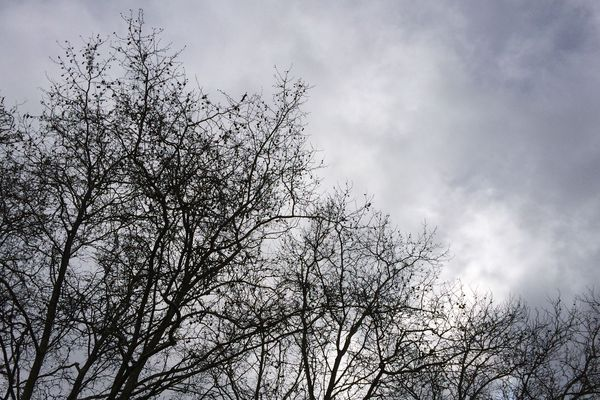 Un ciel plus nuageux qui délivre quelques ondées