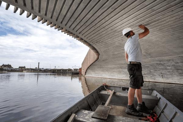Dans la ville de Monster aux Pays-Bas, des architectes ont construit un pont pour chauves-souris