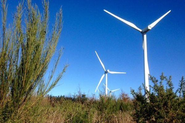 Des éoliennes à Lacombe, dans l'Aude - 30 novembre 2015