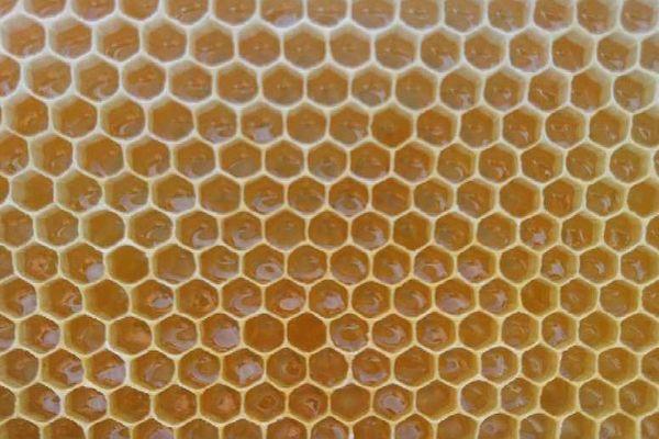 A peine placées, les hausses sont remplies de miel, du jamais vu en début de saison, depuis 20 ans