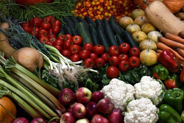 Un site pour passer des commandes groupées de légumes, entre voisins