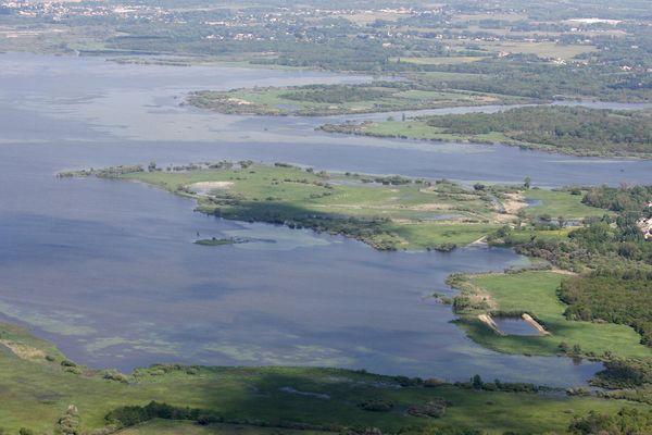 Le botulisme touche de nouveau le lac de Grandlieu en Loire-Atlantique