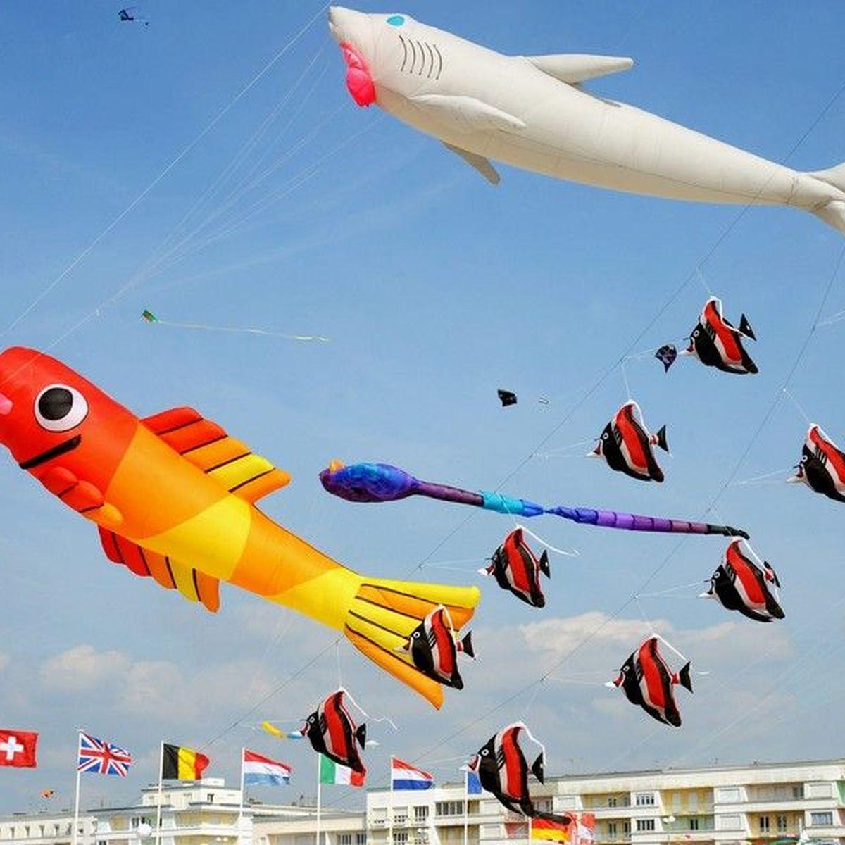 Rencontres internationales de cerfs-volants