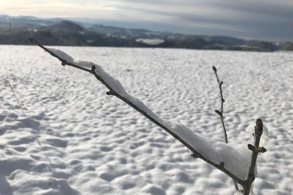 Mardi 8 décembre, la neige pourrait faire son apparition jusqu'en plaine en Auvergne.
