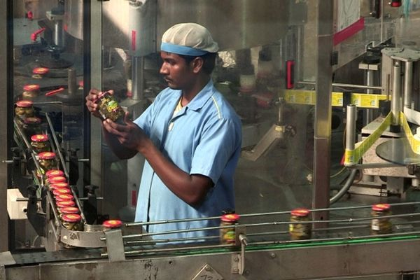 """Les cornichons """"à la française"""" que nous consommons sont désormais cultivés en Inde."""
