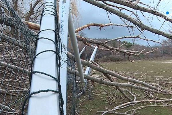 Arbres déracinés, constructions détruites ou encore électricité coupée durant plusieurs jours, le Niolu a été fortement impacté par la tempête du vendredi 13 décembre.