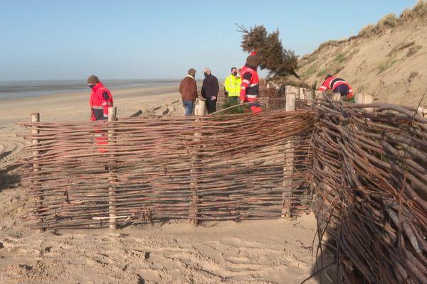 Les sapins de noël pourront-ils protéger les dunes de Bréhal ?