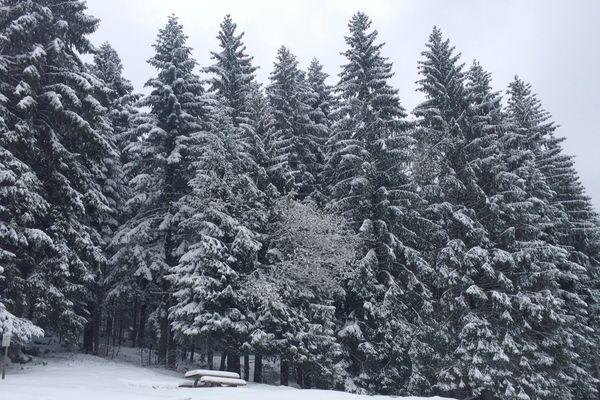 La neige a fait un retour impressionnant dans le massif