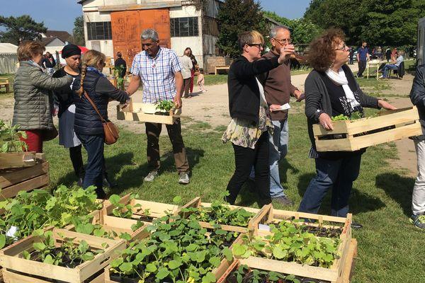 Ce vendredi 17 mai et demain samedi 18 mai, les visiteurs pourront acheter des plants et des fleurs cultivés par les salariés en insertion des Jardins du Coeur de Blois.