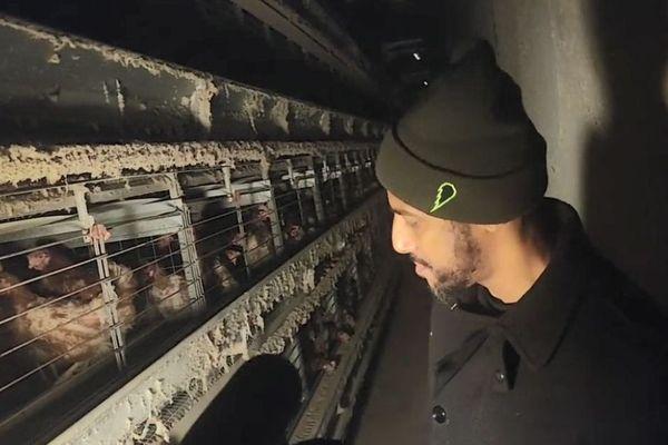 Le rappeur Stomy Bugsy dans un élevage de poules près d'Amiens