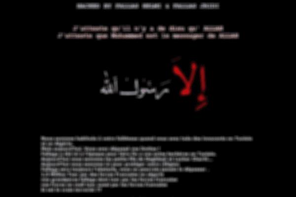 Orléans: le site du Forum des Droits Humains a subi une nouvelle cyber-attaque dans la nuit du 11 au 12 janvier 2015.