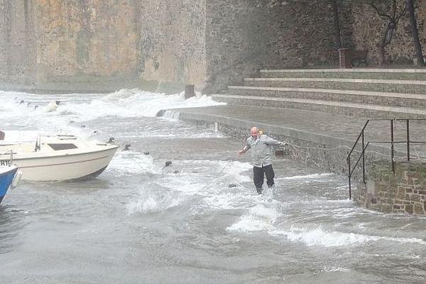 Sous la pression des vagues, les amarres de certains bateaux ont cédé à Collioure.