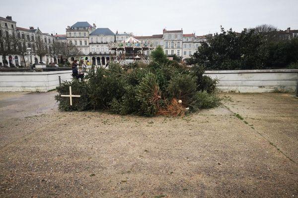 Dépôt sauvage de sapins place Verdun à La Rochelle