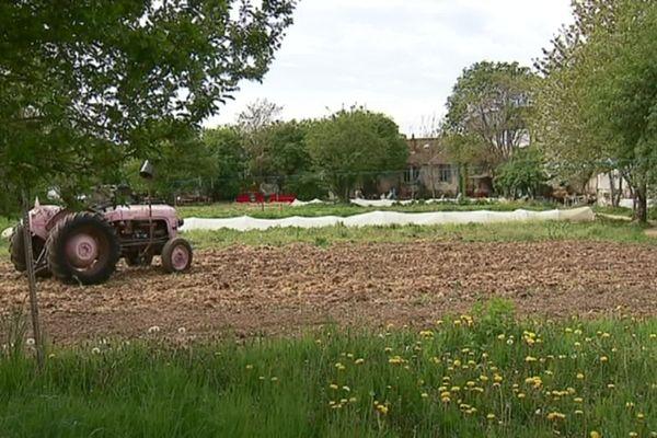 Le terrain n'est plus menacé par la construction d'un éco-quartier depuis novembre 2019.
