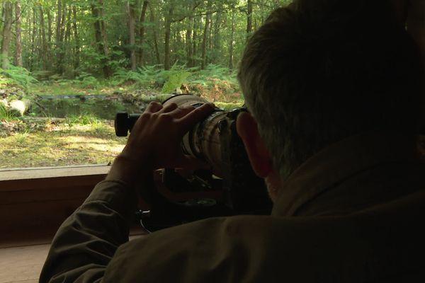 Le photographe animalier Erwan Balança dans son affût à oiseaux installé près de sa maison au sud de Nantes.