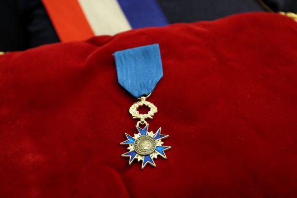 Deux policiers, agressés à Viry-Châtillon en octobre 2016, ont été décorés de la médaille de chevalier de l'Ordre national du mérite, des mains du ministre de l'Intérieur Matthias Fekl.