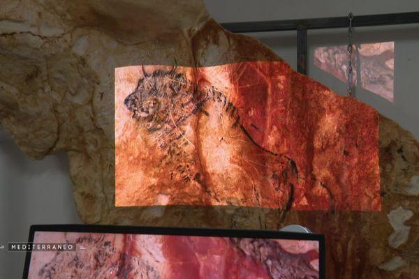 Repoduction du panneau du bison