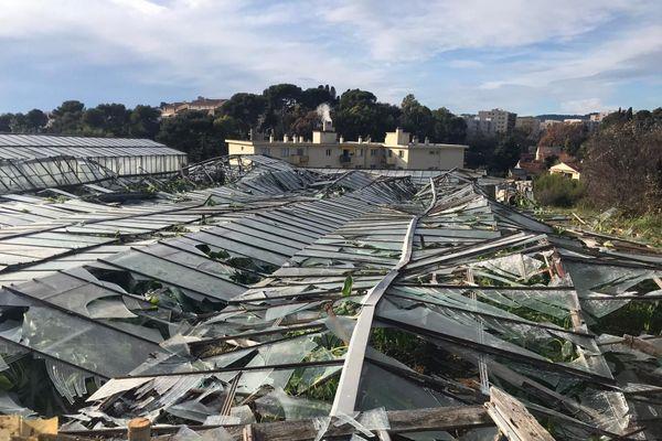 Les serres de Frédéric Nicolet se sont effondrées sous le poids de la grêle le 25 décembre