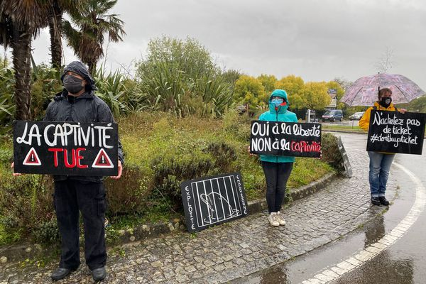 les militants se sont postés sur le rond-point qui dessert l'entrée du parc Planète Sauvage à Port-Saint-Père (Loire-Atlantique)