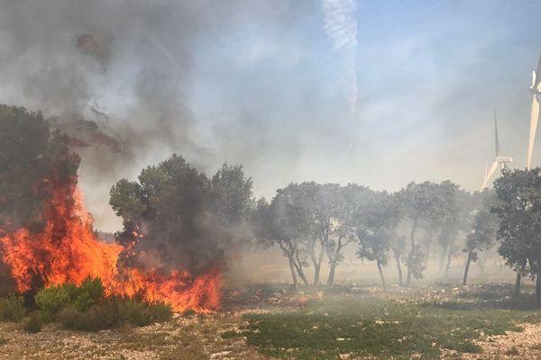 Le feu attisé par la tramontane reste difficile à maîtriser malgré les renforts à La Palme.