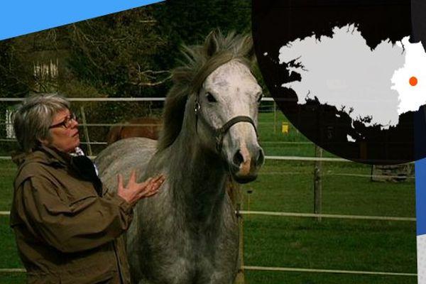 Caroline Bardin étudie le comportement du cheval pour établir une meilleure relation avec l'animal