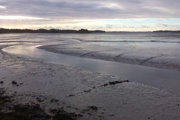 Anse de Pouldon, à deux pas de l'anse de Tromarzin. A marée basse ces endroits de la baie de la rivière de Pont-l'Abbé se transforment en grandes vasières.