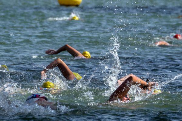 Une course de nage en eau libre (illustration).