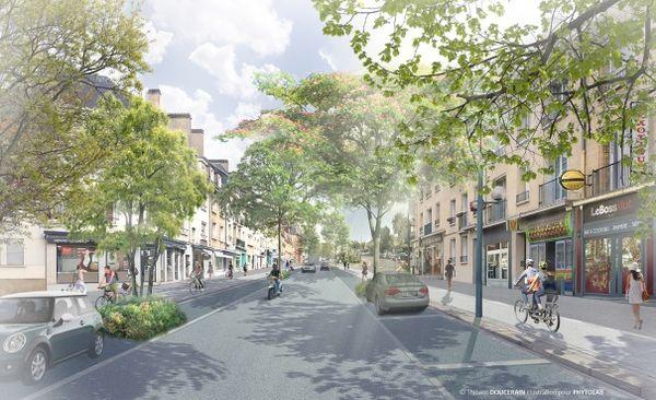 Plus de 60 arbres doivent être plantés rue d'Auge et des voies seront dédiées aux cyclistes.