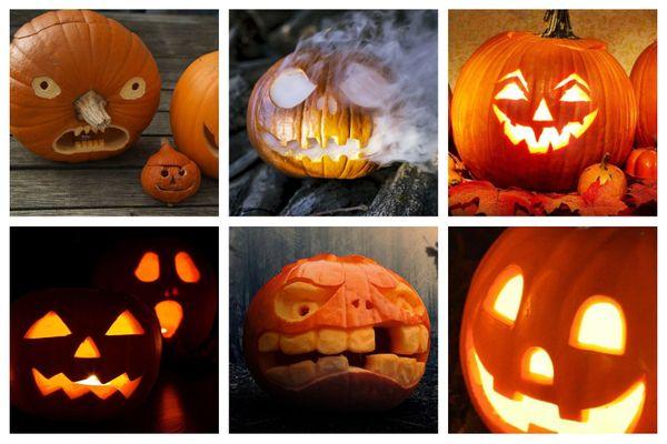 Achat Citrouille Halloween.Jardinage Halloween Ne Decoupez Pas La Citrouille Trop Tot