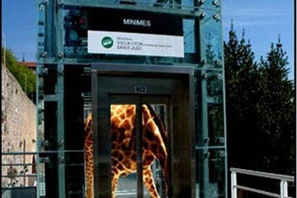 L'ascenseur étrange La Trame - Stéphane Masson Projet soutenu par Kéolis, Sytral et Schindler