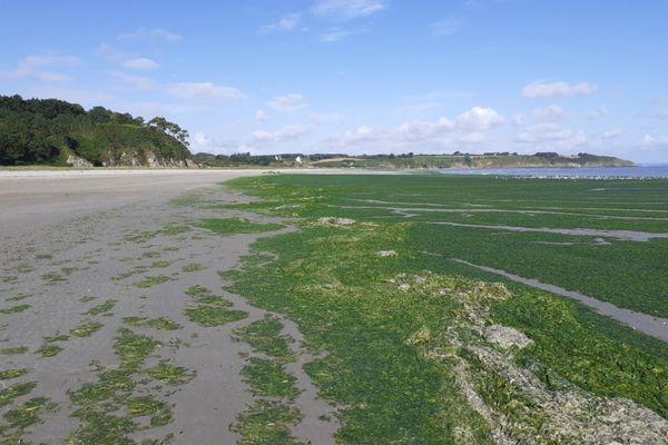 La plage de Grandville à Hillion le 29 juillet 2021. Elle est interdite aux public depuis le 2 juillet.