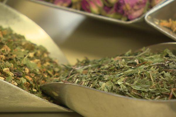 A Saint-Augustin, dans la Corrèze, le Comptoir d'herboristerie prépare, pour ses tisanes, des plantes du monde entier