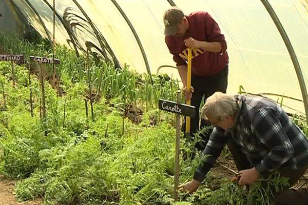 Rui Pires a pris ses  marques dans ce jardin d'insertion à Alès, cela fait 10 ans maintenant qu'il cherche un emploi - 4 avril 2017