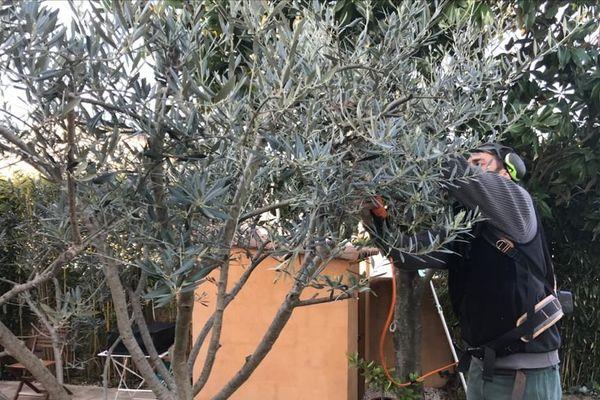 Malgré le coronavirus les jardiniers-paysagistes continuent à travailler malgré l'épidémie mais en adaptant leurs méthodes de travail.