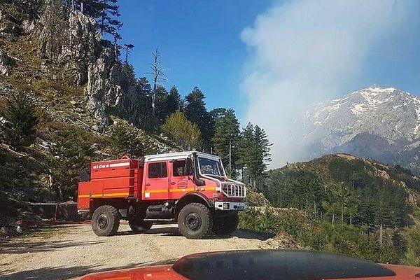 25/04/2017 - 12 hectares de végétations détruits dans un incendie sur la commune de Vivario (Haute-Corse)