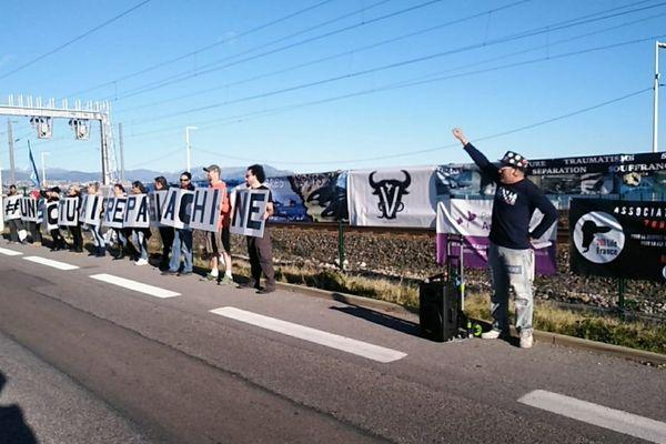 Les manifestants se sont réunis sur la RD6007.