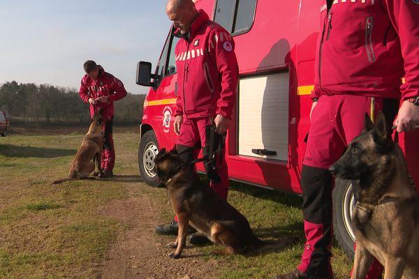 La brigade cynophile des pompiers de Charente