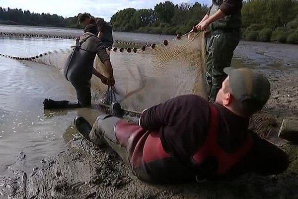 La pêche des étangs de Brenne dans l'Indre est ouverte