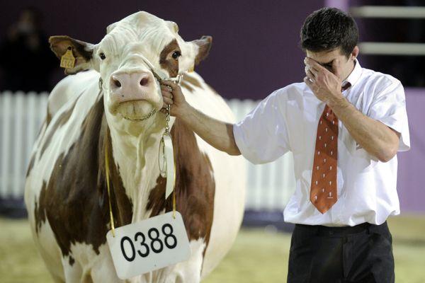 Cette année, il n'y aura ni Salon de l'agriculture, ni concours général agricole. Photo d'illustration