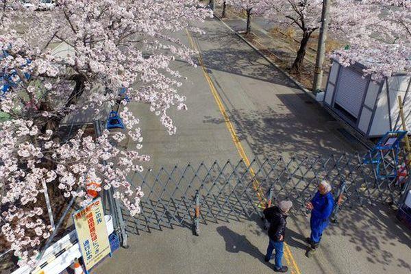 La ville de Tomioka, à proximité de Fukushima : ses habitants ont été évacués depuis 2011.