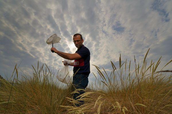 Olivier Lambert, directeur du Centre Vétérinaire de la Faune Sauvage à la recherche des abeilles sauvages de la région.