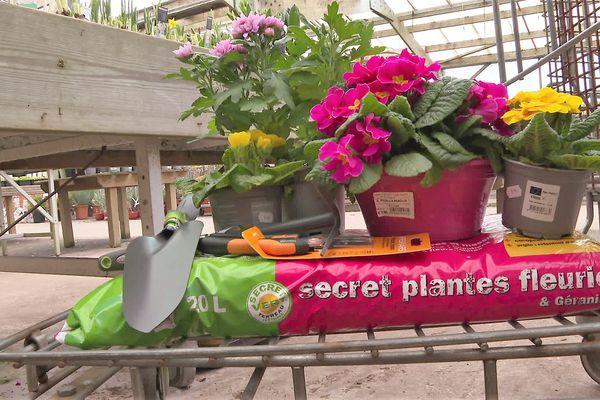Quelques produits vendus en jardinerie